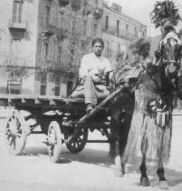 escort cinesi roma donne escort torino